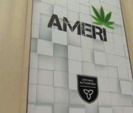 Ameri Yorkville Cannabis Boutique